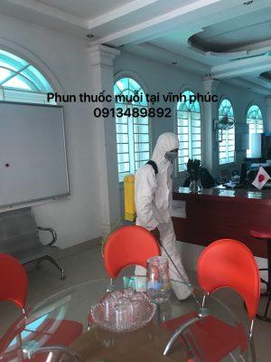 pmvp1